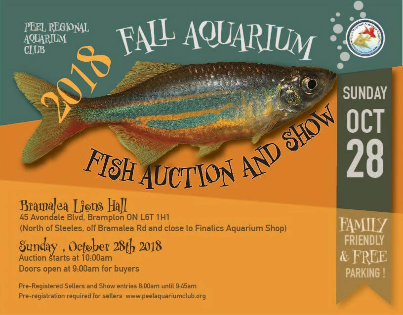 Peel Regional Aquarium Club Fish Auction